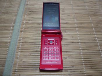 DSC00647-02.jpg